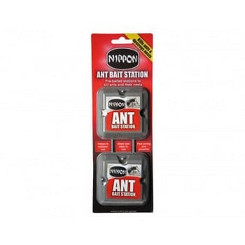 Ant Treatment