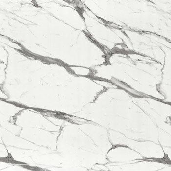 Calacatta Statuario Wall Panels